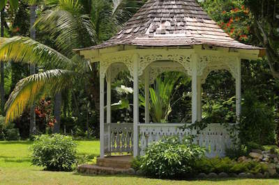 Shaw Park Gardens & Waterfalls in Ocho Rios