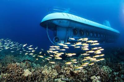 Oahu Shore Excursion: Atlantis Submarine Adventure