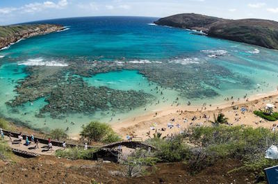 Oahu Shore Excursion: Hanauma Bay Snorkeling