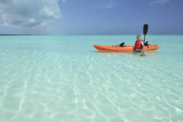Shore Excursion: Kayak Turtle Park in Bahamas