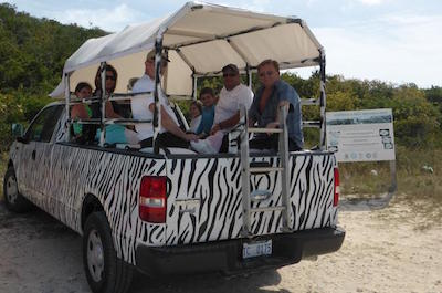 Sightseeing Tours in Providenciales, Turks and Caicos