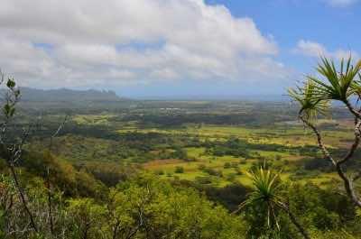 Sleeping Giant Trail in Kauai