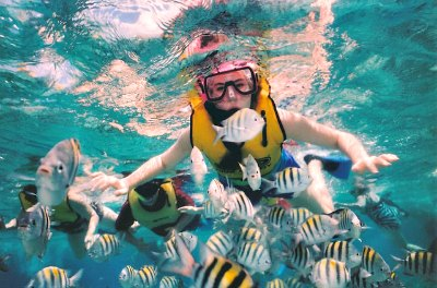 Snorkeling in Martinique