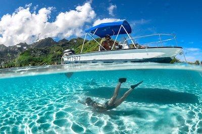Snorkeling in Moorea