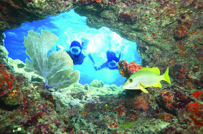 Snorkeling tours in St. Petersburg