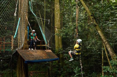 St Lucia Shore Excursion: Rainforest Aerial Tram and Zipline Canopy Tour