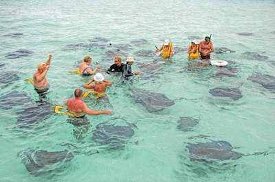 Stingray City in Grand Cayman