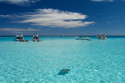 Stingray City Tours Antigua Barbuda