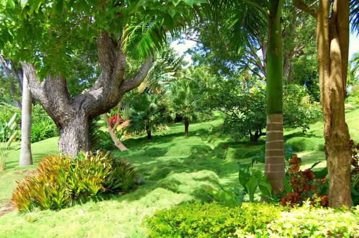 Sunnyside Garden in Grenada