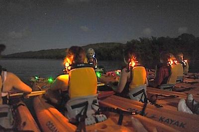 Sunset Bioluminescent Lagoon Kayak Adventure in Fajardo