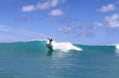 Surfing & Windsurfing In Oahu