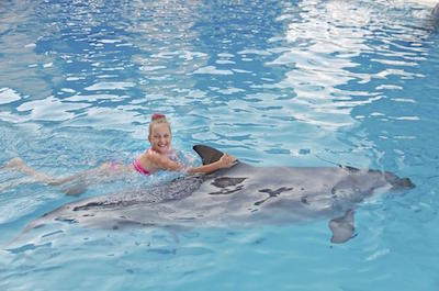 Swimming with dolphins (Dolphin Cove) in Ocho Rios