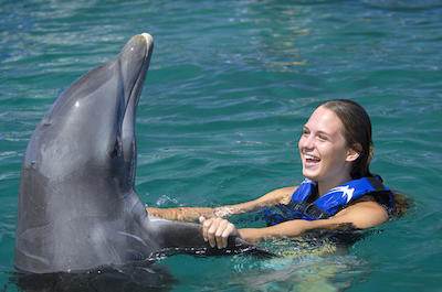 Swimming with dolphins in Punta Cana
