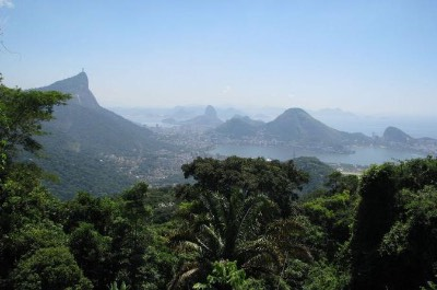 Tijuca National Park in Rio de Janeiro