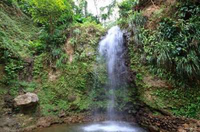 Toraille Waterfall in st. Lucia