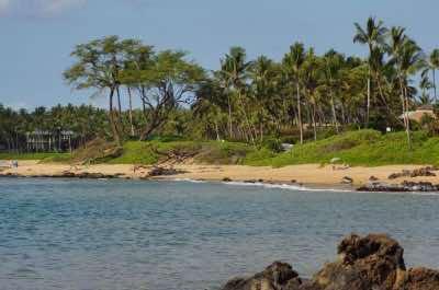 Ulua Beach (Wailea)
