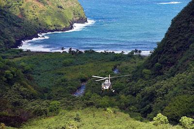 Aloha Adventure