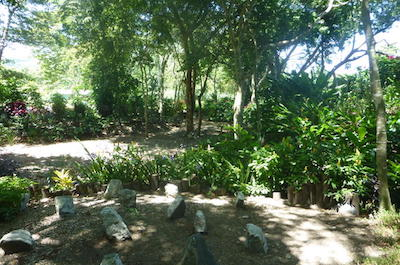 Amber Cove Shore Excursion: Tropical Garden Rancho Don Fernando