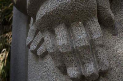 Ann Norton Sculpture Gardens in West Palm Beach