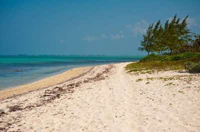 Barker's National Park in Grand Cayman