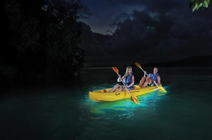 Bioluminescent Mosquito Bay in Puerto Rico