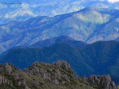 Chirripo National Park in San Jose