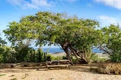 Curacao Christoffel Natioanl Park