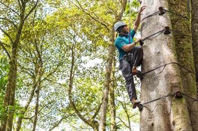 Climbing Tours in Monteverde