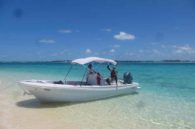 Cruises, Sailing and Water-Tours in Nassau