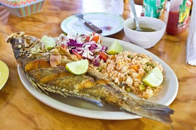 Cultural and Food Tours in Cozumel