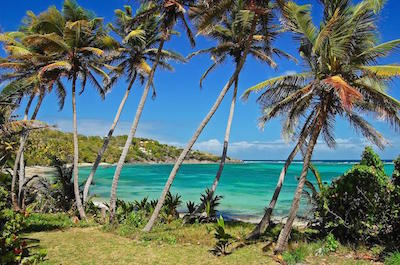 Day Trips and Excursions  Grenada