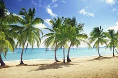 Day Trips and Excursions in Santo Domingo