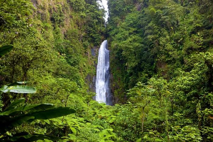 Trafalgar Falls in Dominica