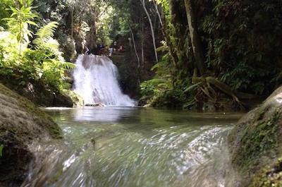 Fern Gully, Jamaica