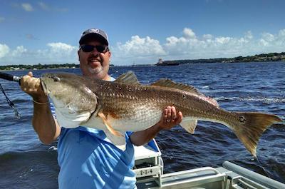 Fishing tours in Sarasota