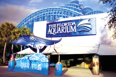 Florida Aquarium in Tampa