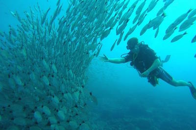 From Playa Hermosa Scuba Diving in Guanacaste