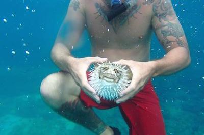 From Playa Hermosa Snorkeling in Guanacaste