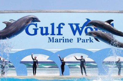 Gulf World Marine Park in Panama City