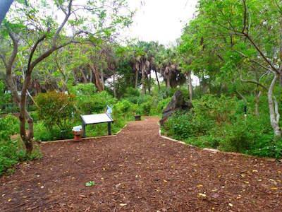Gumbo Limbo Nature Center in Boca Raton