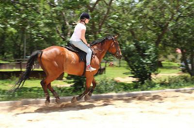 Horseback riding in Ocho Rios