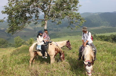 Horseback Riding Tours in San Ignacio