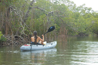 Kayaking tours in fort Myers