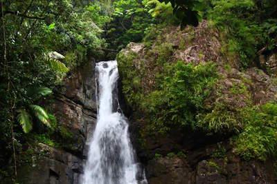 La Mina Falls In El Yunque Rainforest