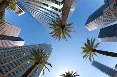 things to do in Beverly Hills - Los Angeles City Tour and Movie Stars' Homes Tour