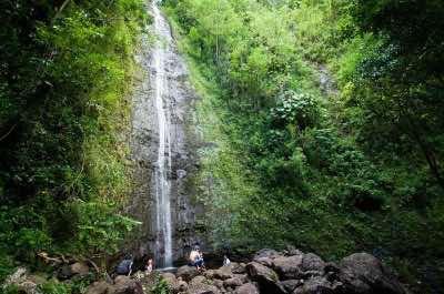 Manoa Falls in Oahu