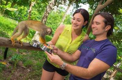 Monkey Land in Punta Cana