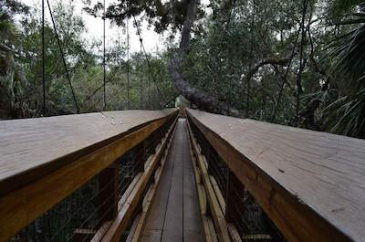 Myakka Canopy Walkway in Sarasota