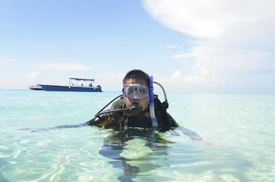 Shark Diving Adventure