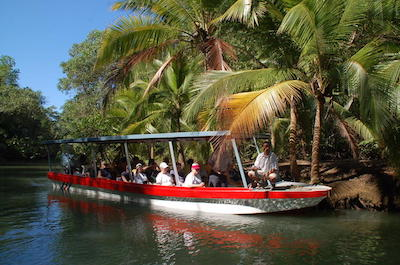 Nature and Wildlife Tours in Jaco